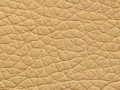 ar114beige Scl