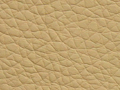 ar112beige Scl