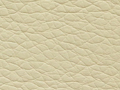 ar110beige Scl