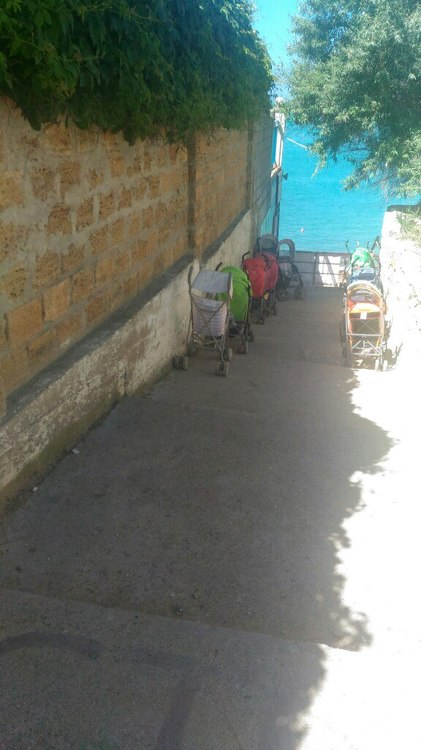 коляски.jpg