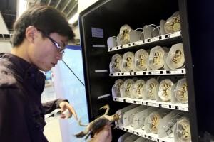 Автоматы китайского города Нанкин продают живых крабов.