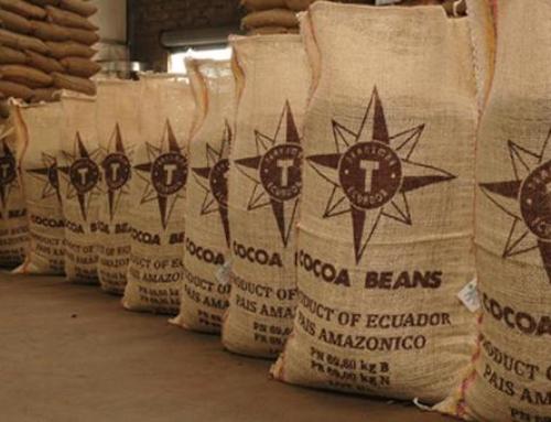 Американцы займутся переработкой какао в Подмосковье
