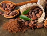 Россия - импорт - какао бобы