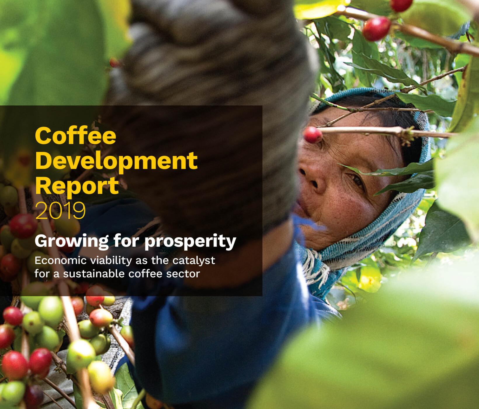 Отчет ICO о развитии мирового рынка кофе 2019-2030
