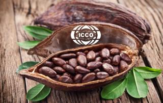 Какао на мировом рынке дорожает на 25-30%